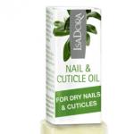 nail-cuticle